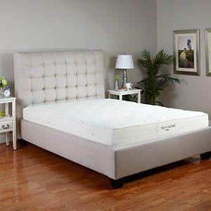 9 Best Terra Bed