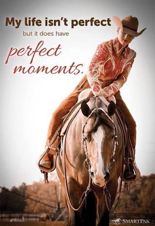 Horse quote, my life isn't perfect but it does have perfect moments, like on the back of a horse!