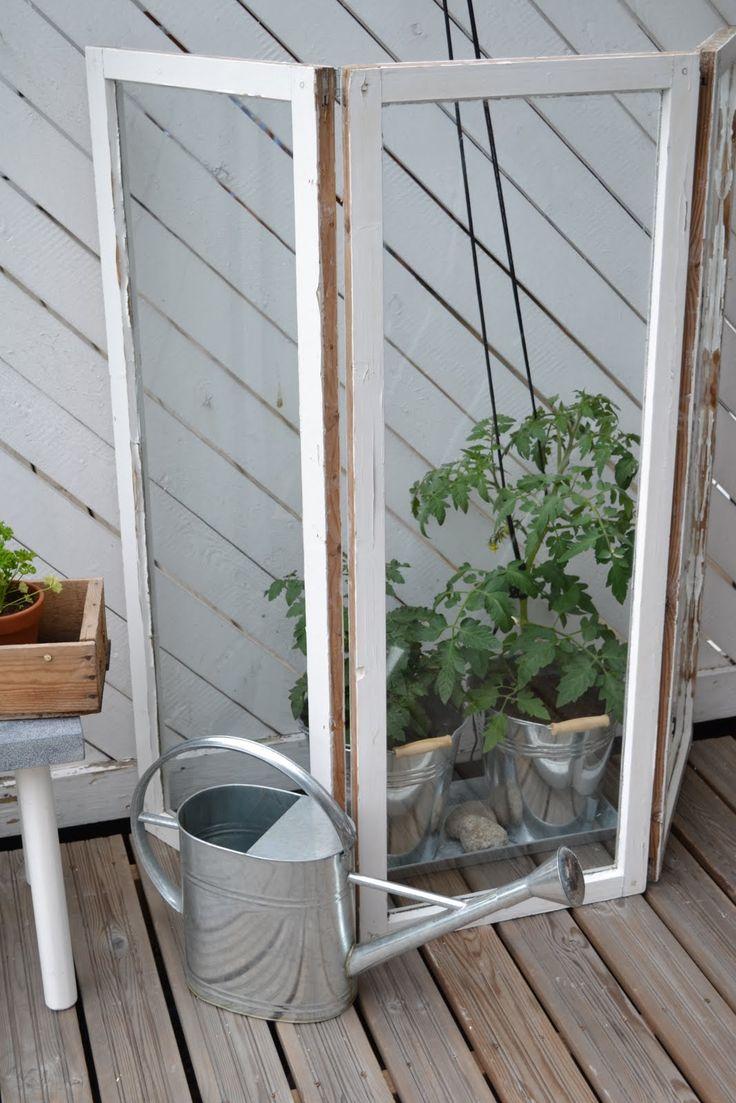växtvitrin fönster växthus uteplats