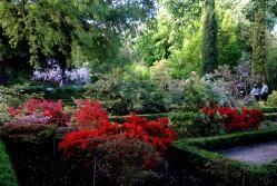 Real Jardín botánico de Madrid (España) es un centro de investigación del Consejo Superior de Investigaciones Científicas. Fundado por R.O de 17 de octubre de 1755 por el rey Fernando VI en el Soto de Migas Calientes, cerca del río Manzanares. Este jardín botánico alberga en tres terrazas escalonadas, plantas de América y del Pacífico, además de plantas europeas.