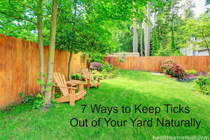 7 Ways to Keep Ticks Out of Your Yard Naturally