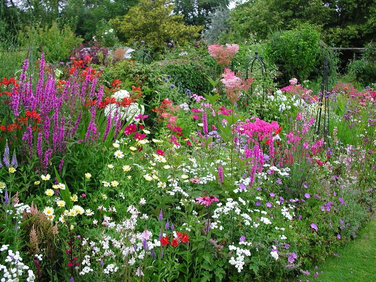 7 best Garden Borders images on Pinterest Flower gardening