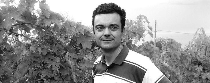 Azienda Agricola Pettinella - Giuliano Pettinella è l'uomo del Tauma; è un giovane avvocato marchigiano e decide di cimentarsi nel produrre il suo vino. L'approccio è puro e volto a valorizzare le potenzialità di una terra unica quale l'Abruzzo...