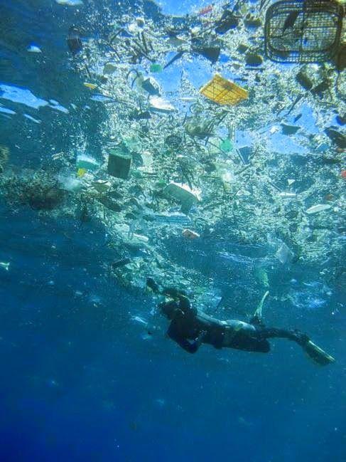 Un Mundo en Paz: El océano, un vertedero global de plástico