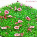 Daisy Grass Mat