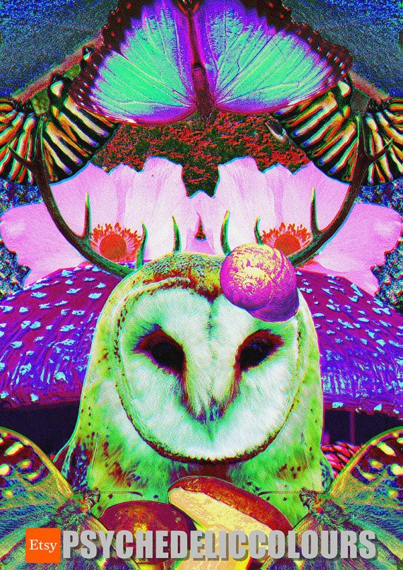 Wise Owl Alianna, Protector of the Forest - Printable Psychedelic Poster!  Aliannas whole purpose of existence is to protect the integrity of the Forest. She commands peace and order. She enables the best in people and animals because she shows them the right way of life, THE WISE WAY. Do yourself a favor and hang psychedelic poster of Wise Owl Alianna digital art in your study room or living room. Shell always be there to calm you and assure you, that everyday you can become a better…