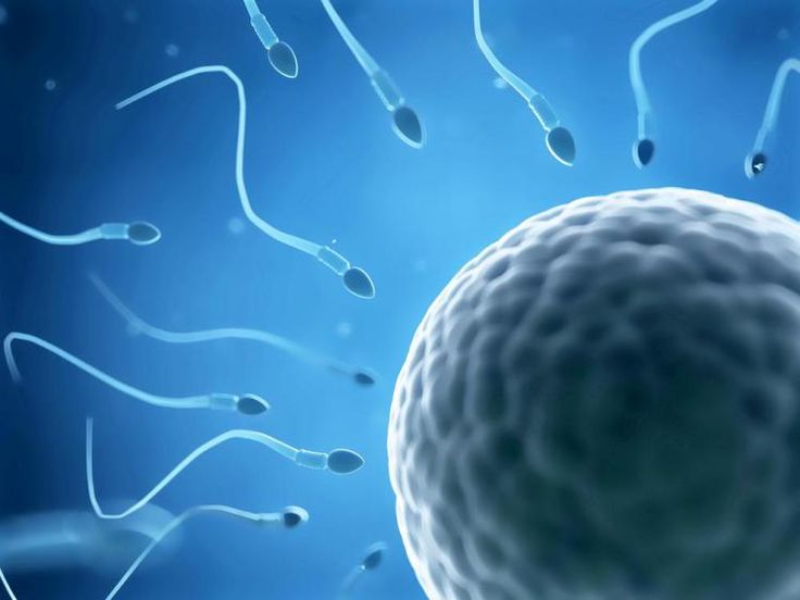 Guy fails paternity test because his unborn twin is the father