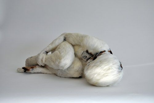 "Lucy Glendinning ""Feather Child"" 2011"