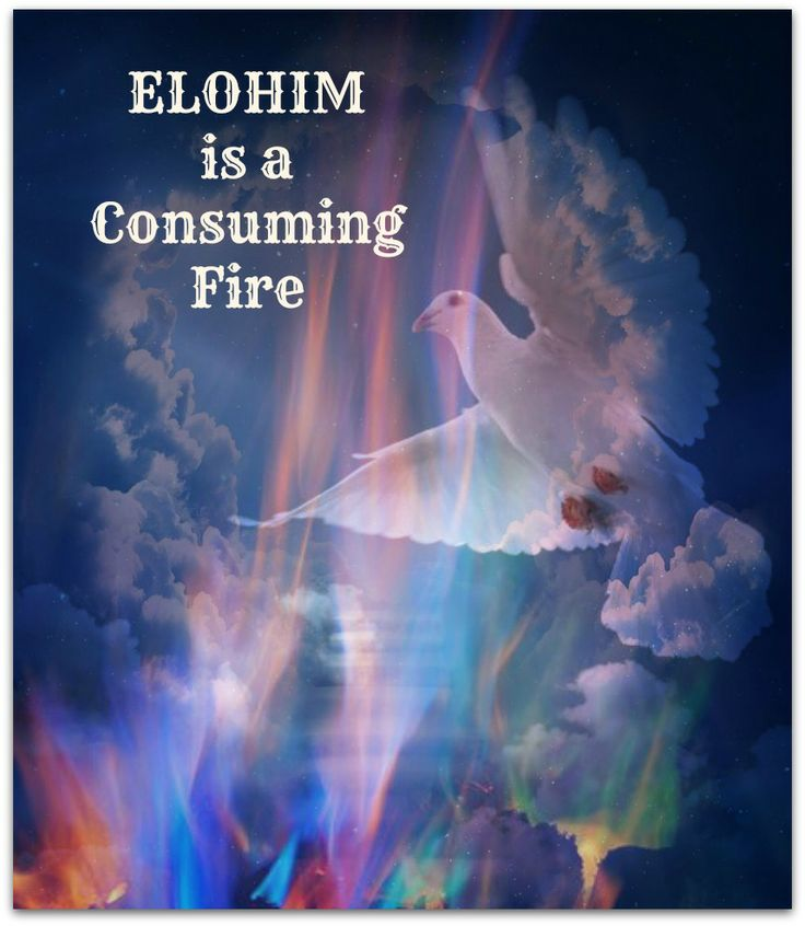 Hebrews 12:29 - Elohim (our God) is a consuming Fire
