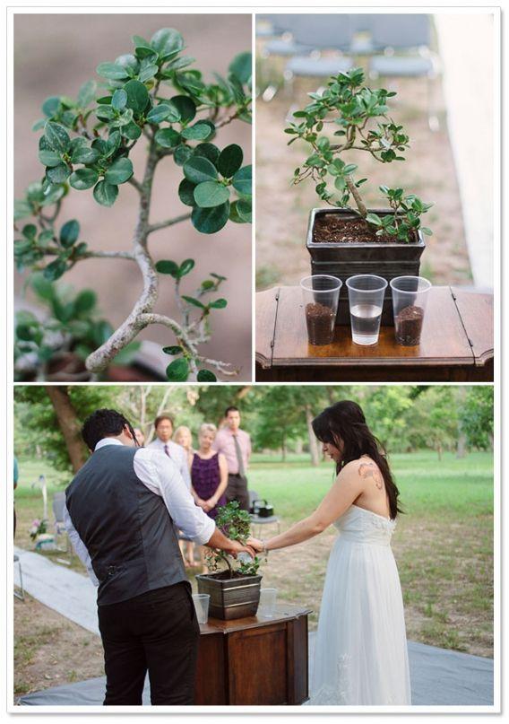 One Eleven Ranch Park Elopement Elopements Wedding