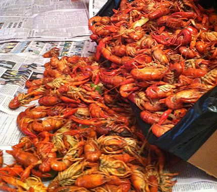 The best restaurants in Baton Rouge, Louisiana