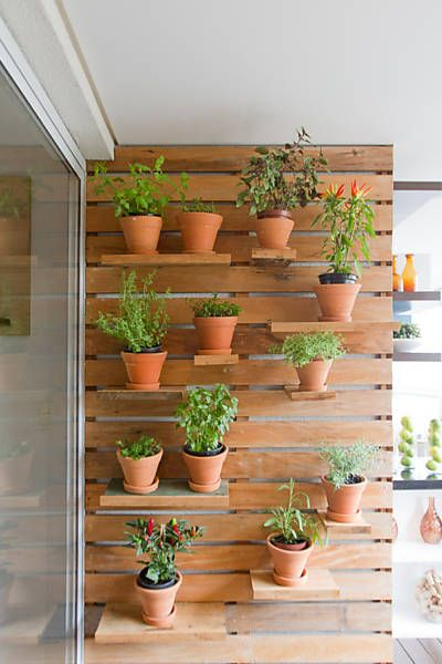 horta jardim vertical:Horta vertical, Google and Search on Pinterest