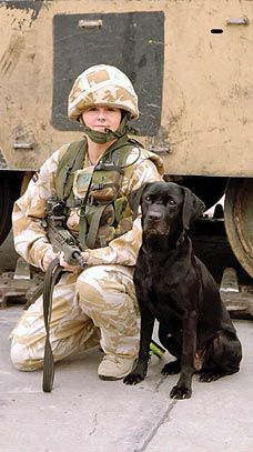 Brave soldier pair, ready for the next assignment. #service #dogs #military
