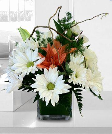 1038 best flowers images on Pinterest