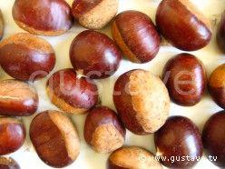 TOUT SAVOIR SUR LA CHATAIGNE & LE MARRON COMESTIBLE - La châtaigne et le marron comestible sont les fruits du châtaignier, mais pas du même châtaignier : la CHATAIGNE vient du châtaignier sauvage, et le MARRON vient du châtaignier greffé pour la culture.