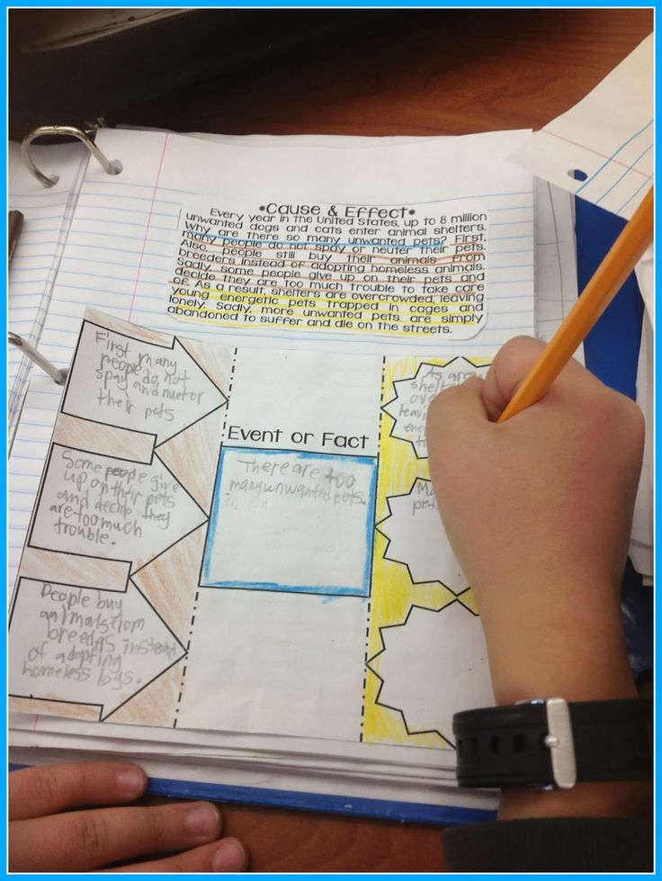 Informational Text Structures for interactive notebooks!  Five free passages with graphic organizers!