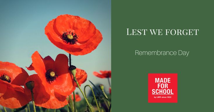 We will remember them- Remembrance Day 2015  Natalie