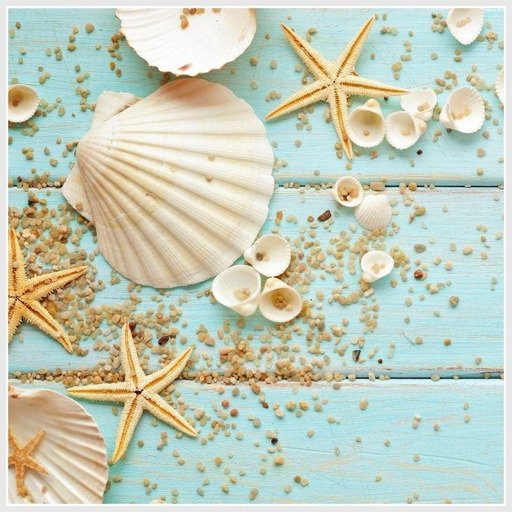 Starfish decorations for bathroom - Estrellas De Mar Caracolas De Mar Decorativas Conchas De Mar Para