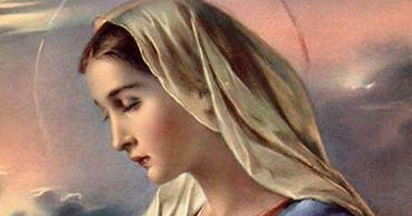 """Botschaft von Mutter Maria für die Kinder der """"Neuen Erde""""! ICH BIN Mutter Maria und wirke mit dieser Botschaft als """"Vermittlerin"""" z..."""