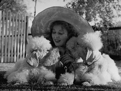 Greer Garson Cuddling Her Two White Standard Poodles Which She Sent to Obedience School