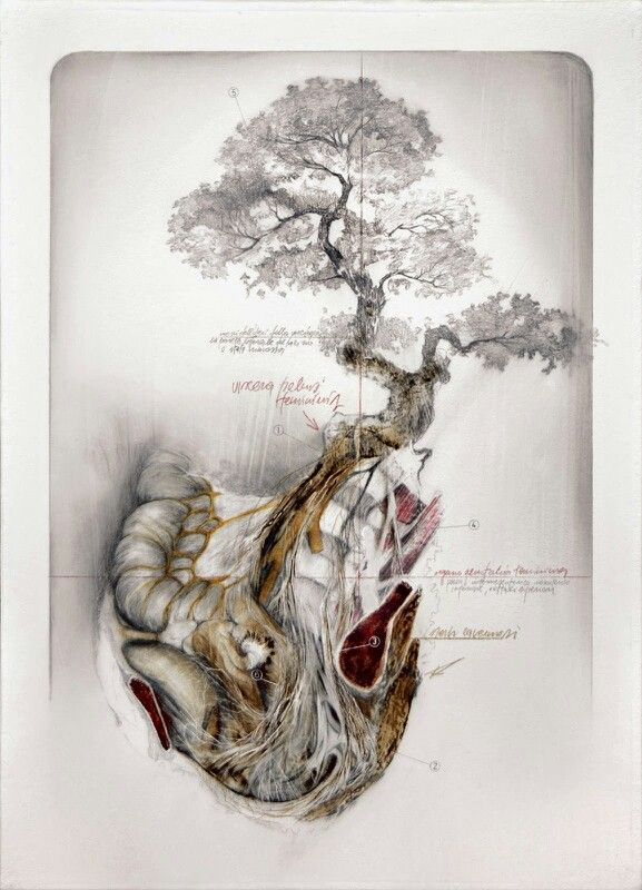 "Nunzio Paci's Graphite and Oil Paintings Merge Nature and Anatomy - His art explores the relation between men, animals and nature evolution and mutation - His works always represents a body including a lot of mutations. The painter says his intention is ""to explore the infinite possibilities of life, in search of a balance between reality and imagination."""