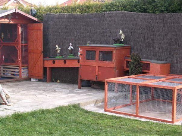 1000 images about rabbit housing ideas outdoors on for Awesome rabbit hutches