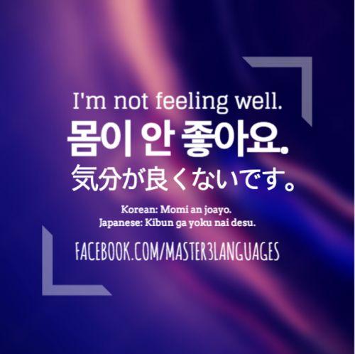 'I'm not feeling well.' in Korean & Japanese #Master3Languages #korean #japanese #koreanphrase #japanesephrase #usefulkorean #usefuljapanese