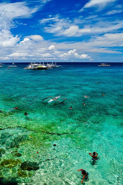 Apo Island, Philippines. Go to www.YourTravelVideos.com or just click on photo for home videos and much more on sites like this.