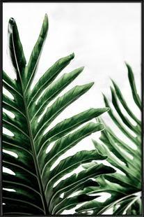 Leaves 1 - Mareike Böhmer - Poster im Kunststoffrahmen