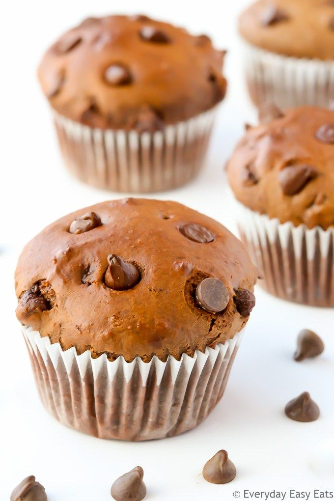 Double Chocolate Muffins - Moist, fudgy cocoa muffins studded with chocolate chips. Chocolate-lovers rejoice! | EverydayEasyEats.com
