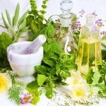 17 of The Most Underrated Medicinal Plants In The World