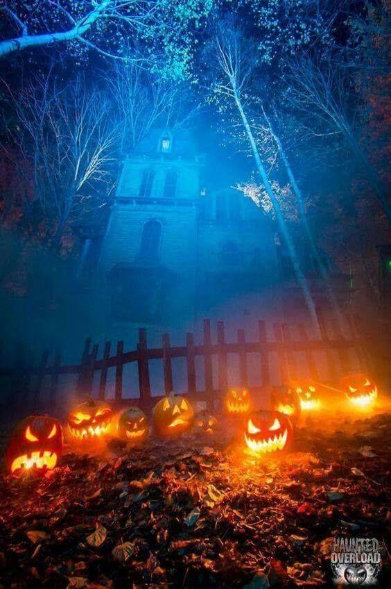 Spooky Halloween Scenes Spooky Halloween Scenes Gruselige Halloween Szenen Scenes Halloween Effrayan In 2020 Outdoor Halloween Halloween Scene Halloween Outside