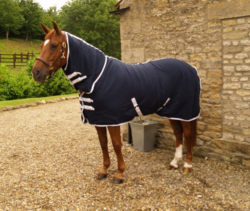 1000+ Images About Horse Rugs On Pinterest