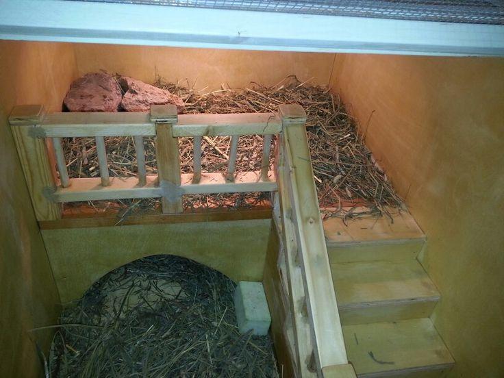 how to make tortoise house