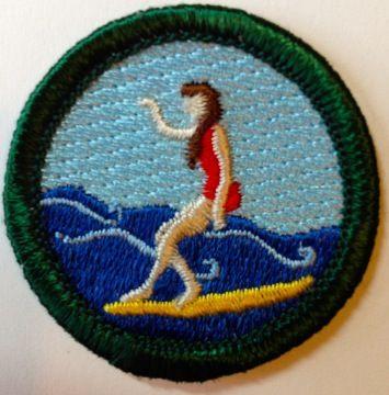 17 best images about gsco junior badges on pinterest