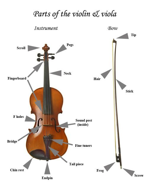 40 best Parts of the violin images on Pinterest | Musical ...
