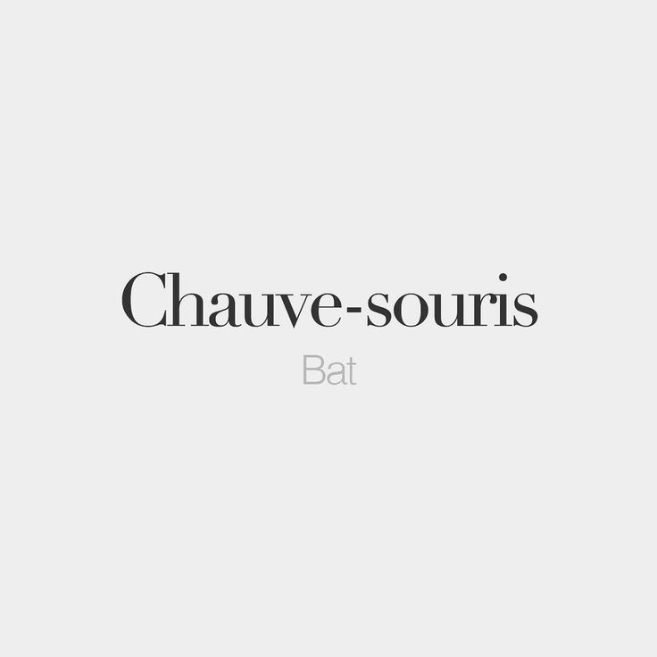 Chauve-souris (feminine word literally: bald mouse) | Bat | /ʃov.su.ʁi/