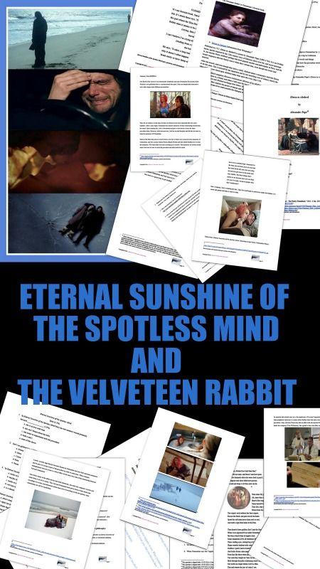 essay about eternal sunshine of the spotless mind