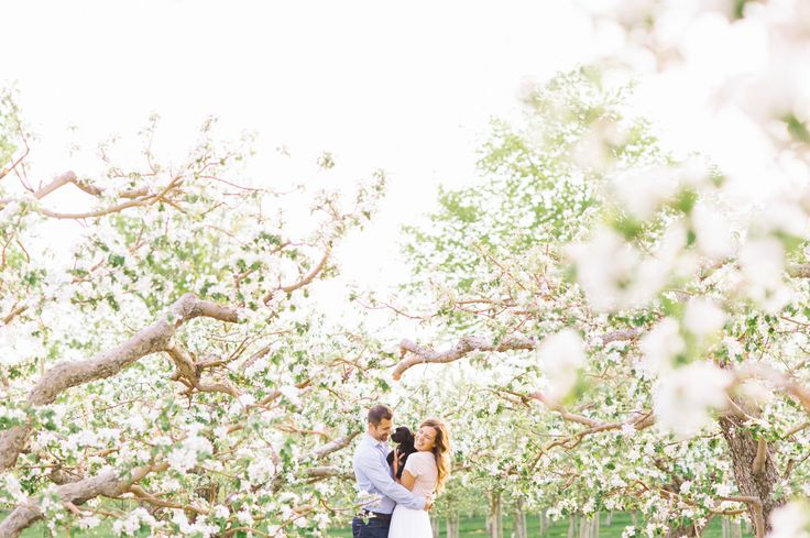 Apple Blossom Engagement Barb Simkova for Tara McMullen Photography