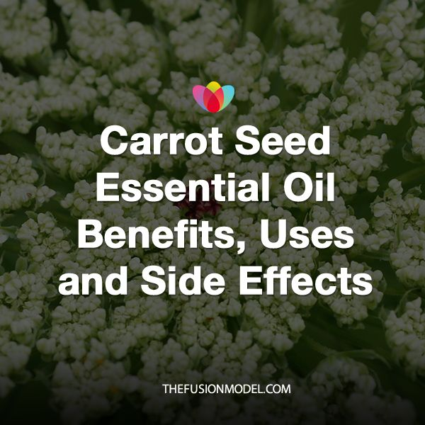 Carrot Seed Essential Oil Benefits, Uses and Side Effects
