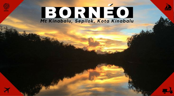 Voyager seule en Asie – Bornéo malaisien, la jungle et le  Mont Kinabalu  #femme #itineraire #lajungleetleMontKinabalu #solo #VoyagerseuleenAsie–Bornéomalaisien