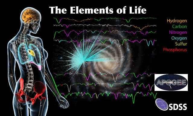 Una mappa della concentrazione degli elementi necessari alla vita nella Via Lattea Astronomi del progetto SDSS/APOGEE hanno annunciato i risultati di uno studio che ha riguardato oltre 150.000 stelle della Via Lattea e ha portato alla mappatura della concentrazione di vari elementi. #sdss #apogee