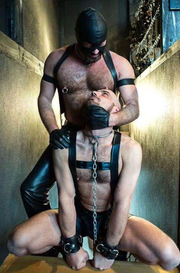 free gay porn twinks bareback tube videos