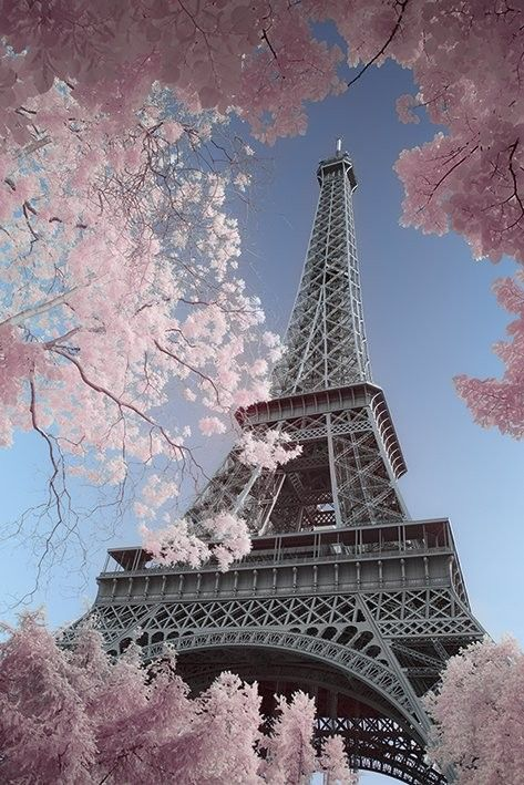 Paris - Eiffel Tower, David Clapp Poster | Sold at Europosters
