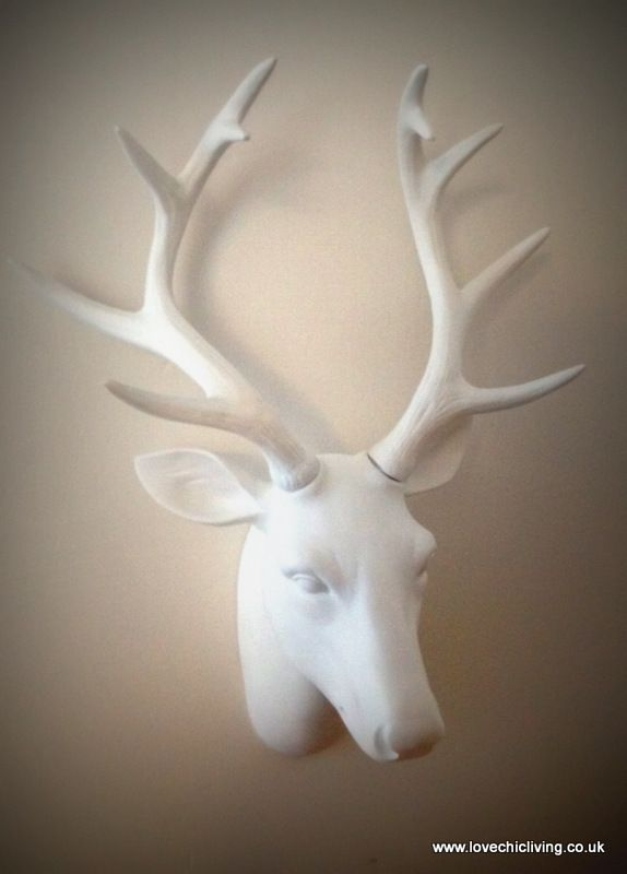 Gorgeous stag head from Next - how lovely would this look draped in fairy lights above my mantle Ooh!