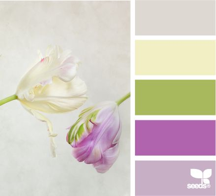 tulip hues: Color Palettes, Color Schemes, Tulip, Bedroom Colors, Color Combinations, Colour Inspiration, Flower Colors