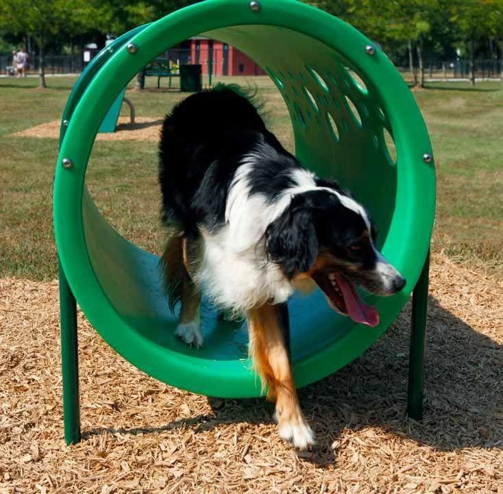 Barkpark Doggie Crawl Dog Park Dog Agility Dog Playground