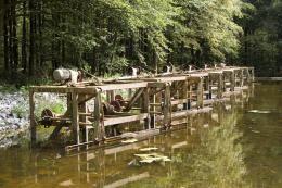 Kom de unieke combinatie van natuur en techniek in het Waterloopbos bewonderen. Je vindt hier de schaalmodellen van 35 waterwerken. Het infocentrum met waterspeelplek voor kinderen is het ideale startpunt voor een bezoek aan dit waterrijke bos.  Waterloopkundige modellen In het Waterloopbos vind je de schaalmodellen van zo'n dertig grote waterwerken uit de hele wereld. Lees verder op http://www.natuurmonumenten.nl/waterloopbos
