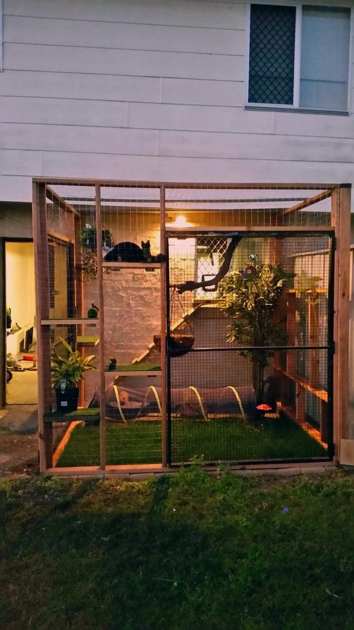 Catio For Our Indoor Kitty In 2020 Cat Patio Outdoor Cat