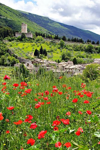 Assisi, Umbria , Italy